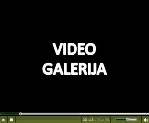 Izrada_video_galerija